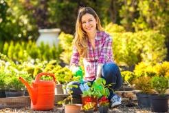 gardening-hobby